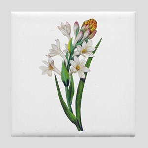 Tuberosa by Pierre Joseph Redoute Tile Coaster