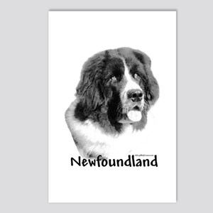Newf 9 Postcards (Package of 8)