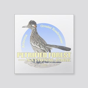 Petrified Forest NP Sticker