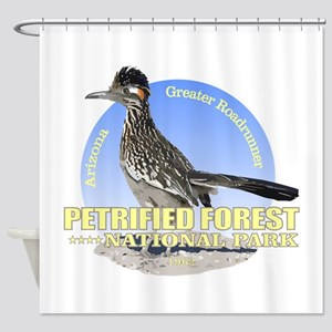 Petrified Forest NP Shower Curtain
