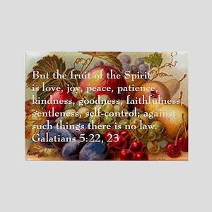 Fruit of the Spirit Rectangle Magnet