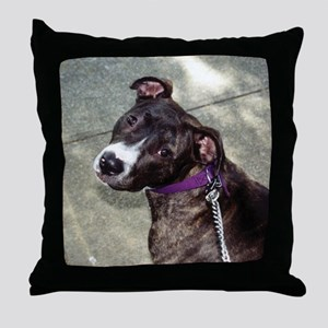 Pit Bull Pillow - Niquita