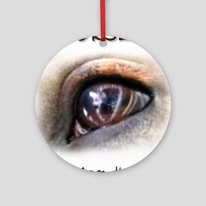 Horses Eye Ornament (Round)