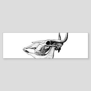 Bull Skull Bumper Sticker