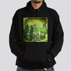 dublin ireland art illustration Hoodie