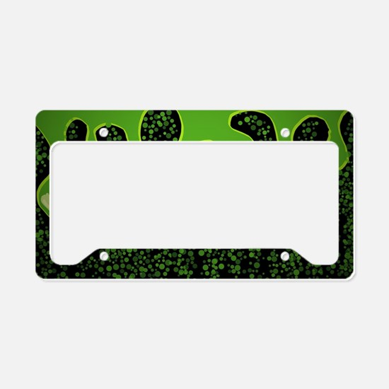 Cute Green black License Plate Holder