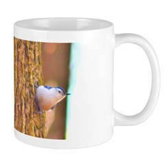 Larry the Nuthach Mug
