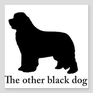 Newfoundland : The other black dog Square Car Magn