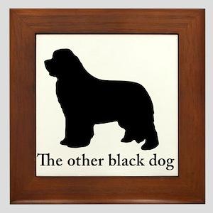 Newfoundland : The other black dog Framed Tile