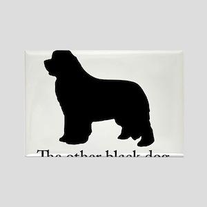 Newfoundland : The other black dog Rectangle Magne