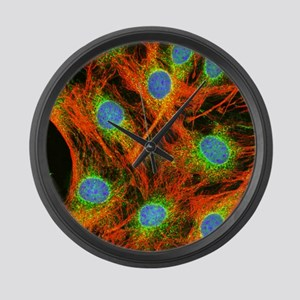 Fibroblast cells - Large Wall Clock