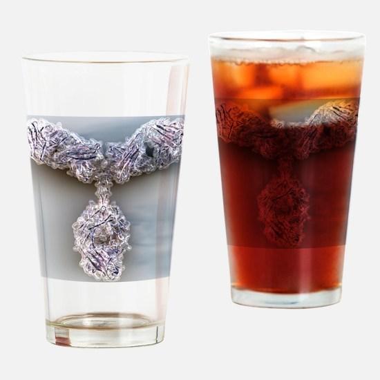 Antibody, molecular model - Drinking Glass