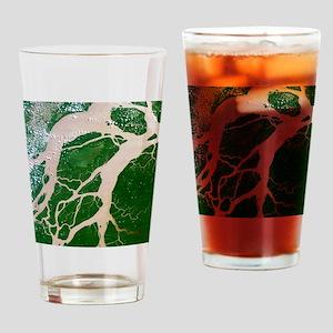 Amazon delta, Brazil - Drinking Glass