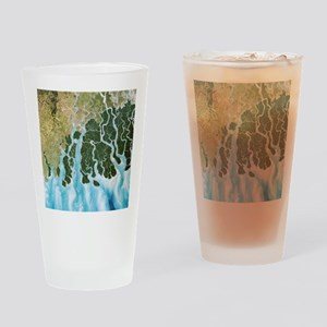 Ganges River delta, India - Drinking Glass