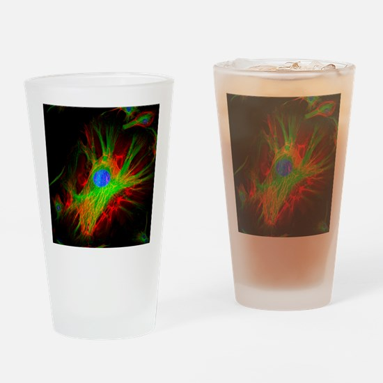 Cell structure - Drinking Glass