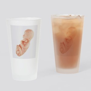 Model of a foetus - Drinking Glass