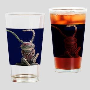 Earwig, SEM - Drinking Glass