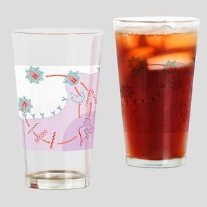 HIV replication - Drinking Glass