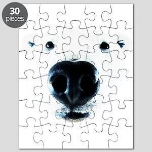Polar Bear Sniff Puzzle