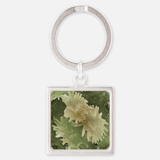 Olive leaf trichomes, SEM - Square Keychain