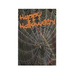 Halloween Spider Web Rectangle Magnet