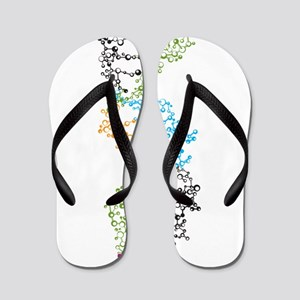 DNA Flip Flops