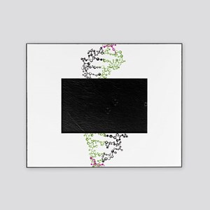 DNA Picture Frame