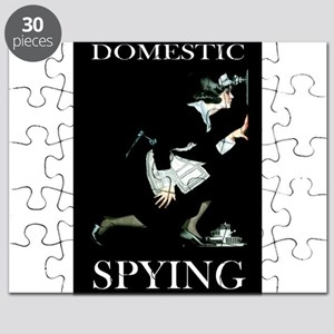 DOMESTIC SPYING_dhs Puzzle