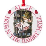 ALICE DOWN THE RABBIT HOLE_PINK copy Round Orn