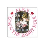 ALICE DOWN THE RABBIT HOLE_PINK copy Square St
