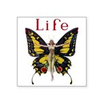 Leyendecker Butterfly_MASTER copy Square Stick