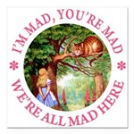 ALICE CAT IM MAD YOURE MAD_PINK copy Square Ca