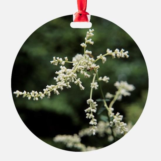 Artemisia flowers - Ornament (Aluminum)