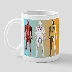 Human anatomy ,artwork - Mug