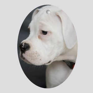 Boxer Puppy - Oval Ornament