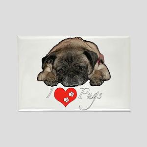 I love pugs Rectangle Magnet