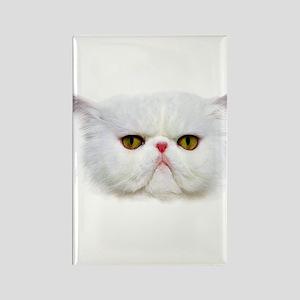 Grumpy Cat Rectangle Magnet