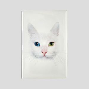 White Cat Rectangle Magnet