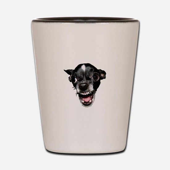 Vicious Chihuahua Shot Glass