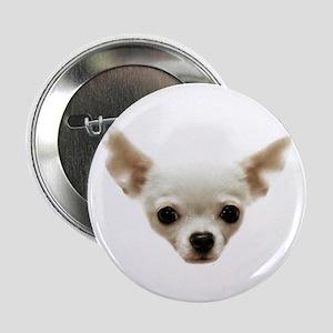 "White Chihuahua 2.25"" Button"