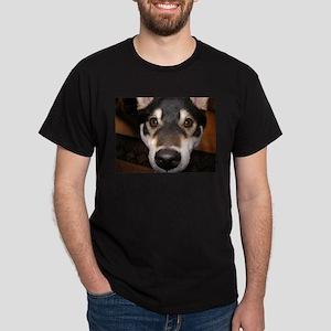 Close up Shiba on dark t-shirt