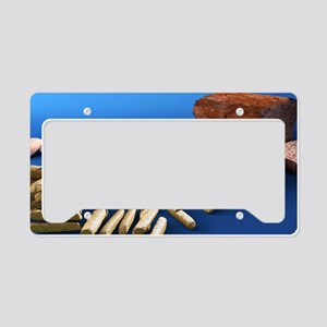 work - License Plate Holder