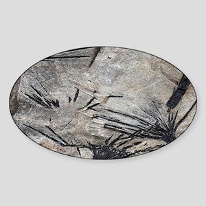 Black tourmaline in mica schist - Sticker (Oval)