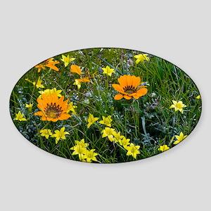Gazania leiopoda - Sticker (Oval)
