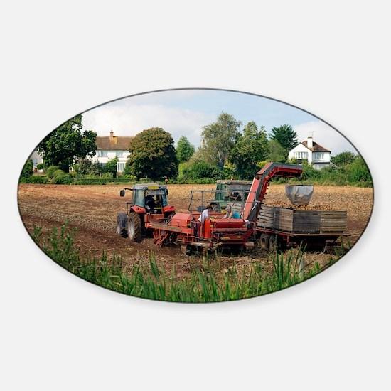 Harvesting potatoes - Sticker (Oval)