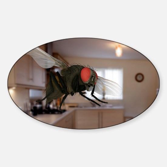 EM - Sticker (Oval)
