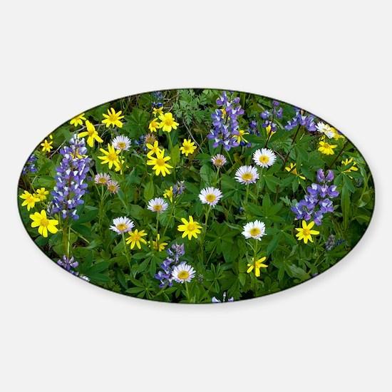 Mountain meadow - Sticker (Oval)