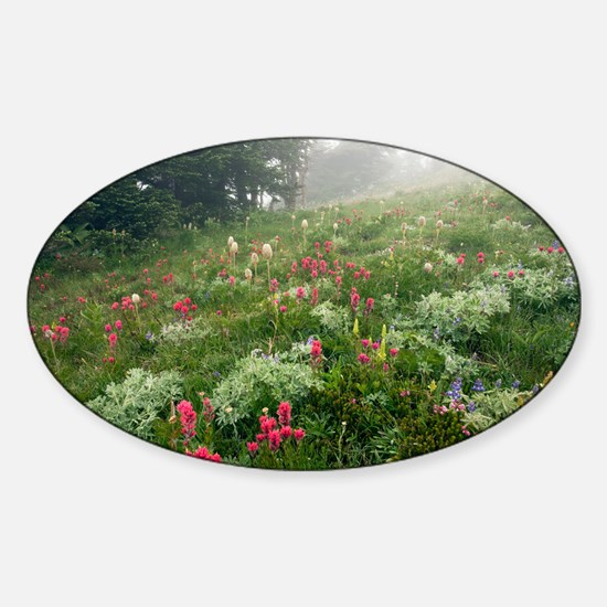 Mountain meadow in the mist - Sticker (Oval)