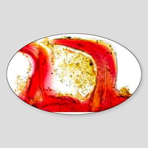 Shark skin, light micrograph - Sticker (Oval)