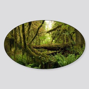 Temperate rainforest - Sticker (Oval)
